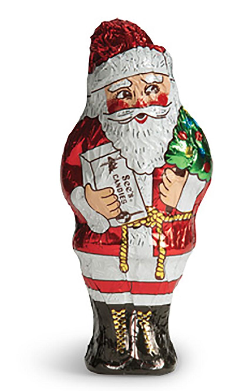Santa Claus Sees