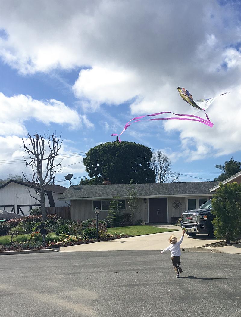 Kite5