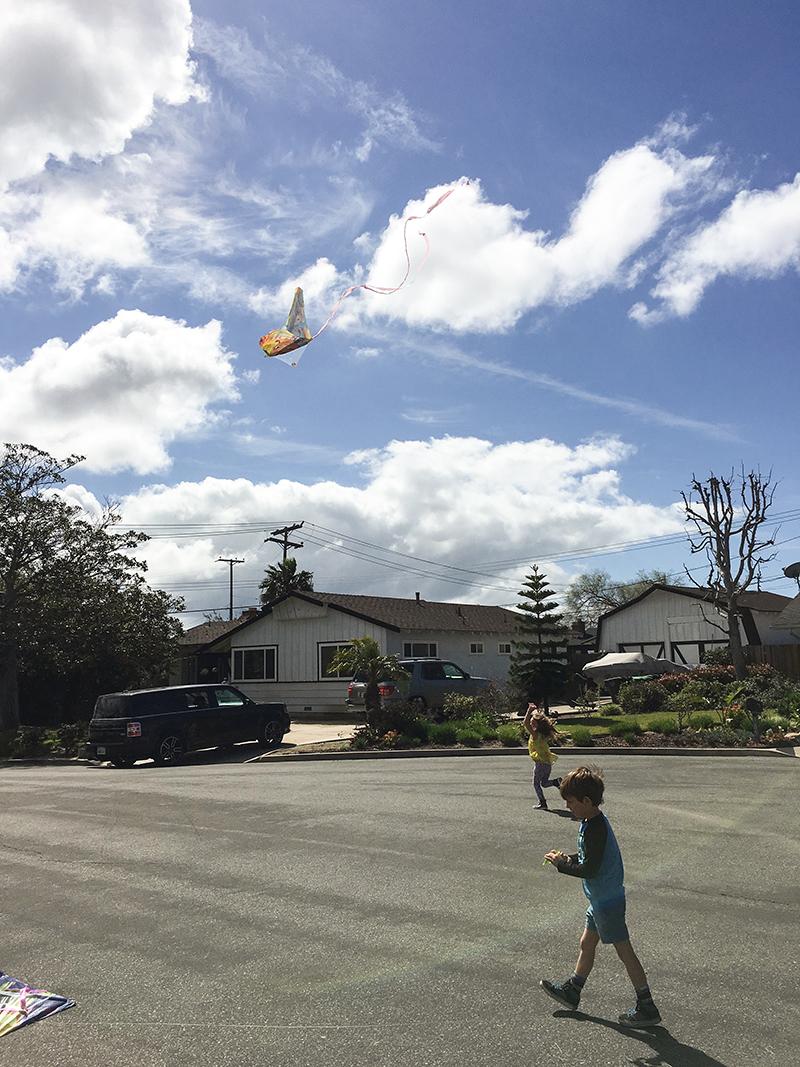 Kite8